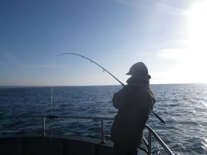sea fishing galway